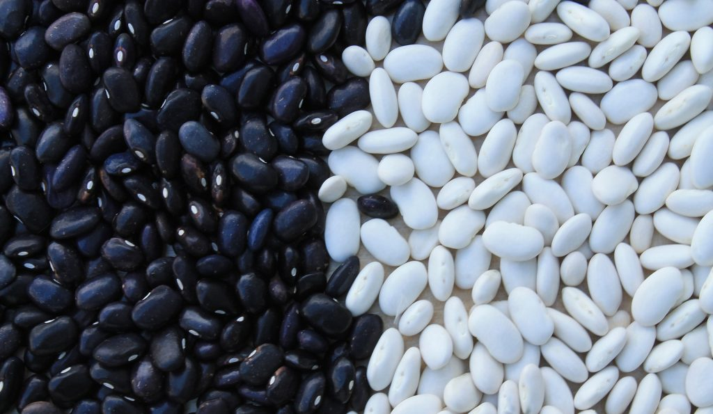 Black and white beans in a contrasting pattern